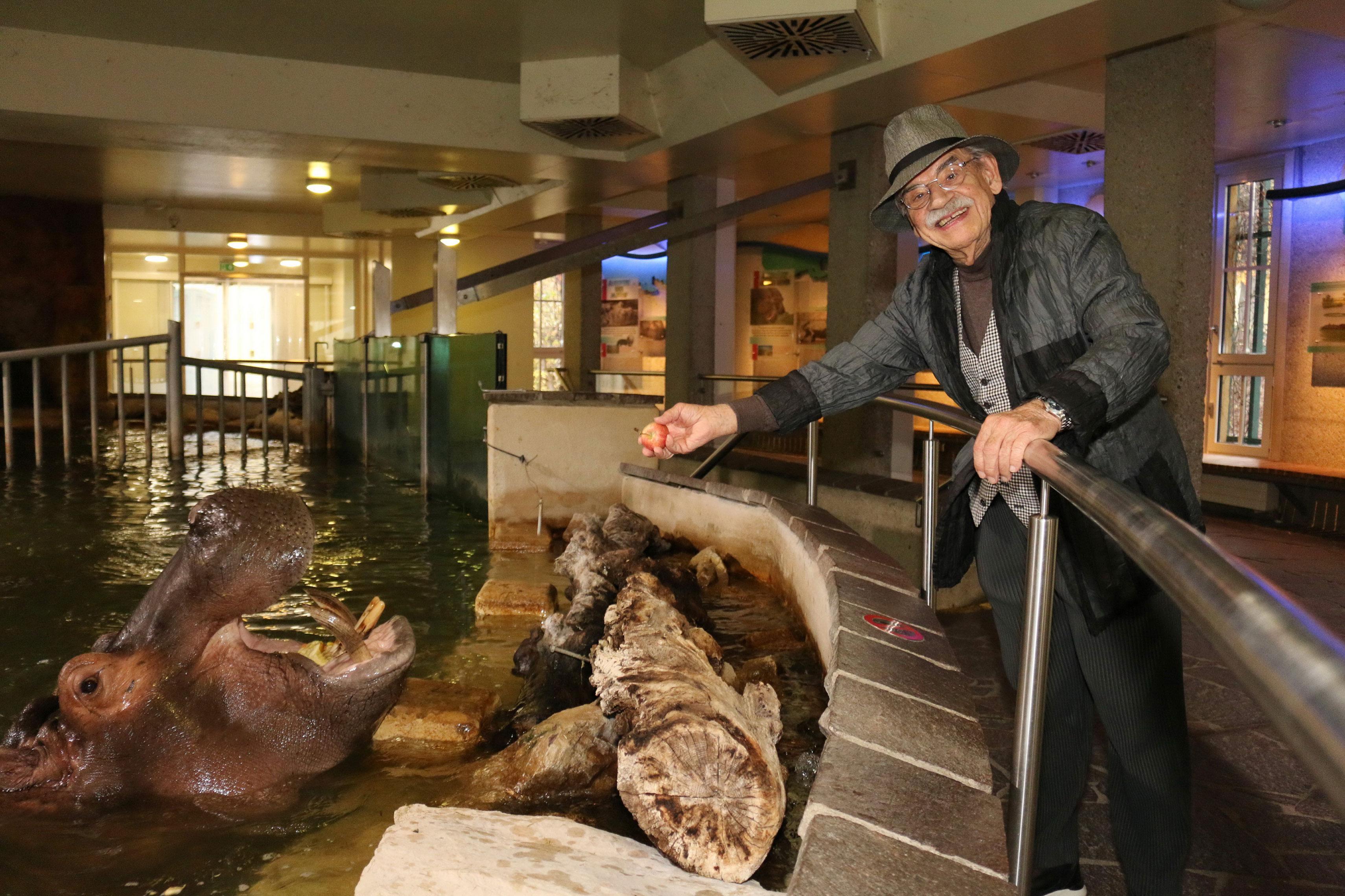 Gottfried Kumpf füttert das Flusspferd
