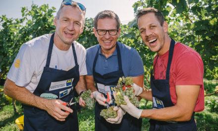 Prominente Hobbywinzer verwandelten Weintrauben in 10.000 Euro für das Ö3 Weihnachtswunder