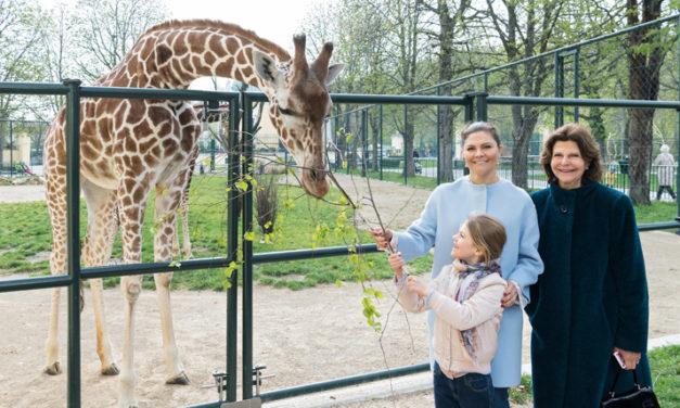 Schwedische Königsfamilie auf Zoobesuch in Wien